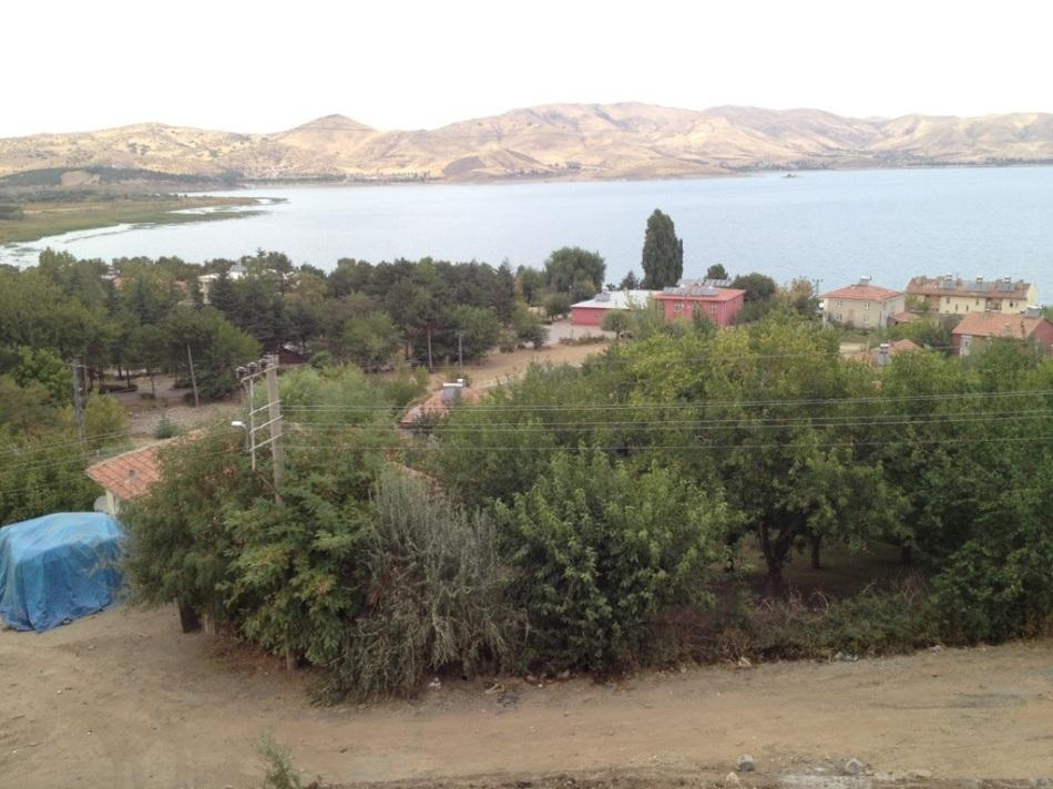 20121006-174536.jpg