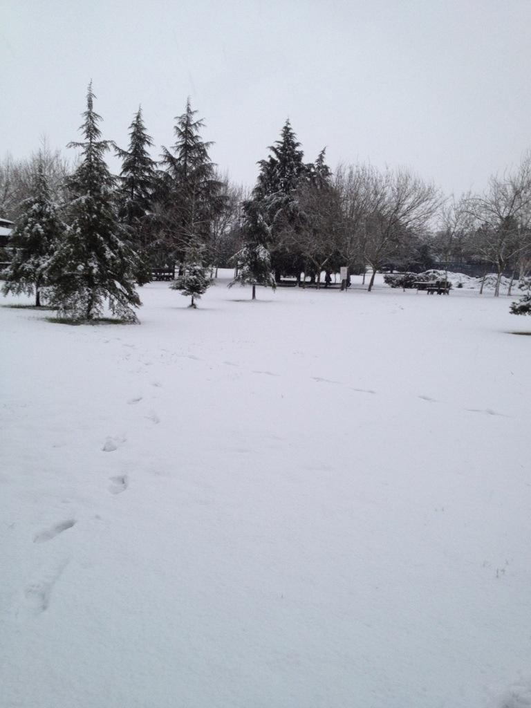 20121220-180606.jpg